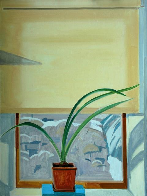 Richard Kirk Mills, 'Thin Winter Light with Amaryllis', 2019, Blue Mountain Gallery