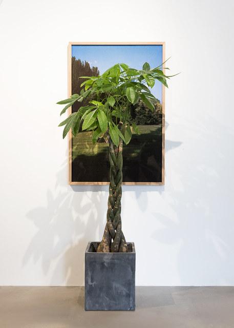 , 'Garden Sitters (The world is burning),' 2018, Blindspot Gallery