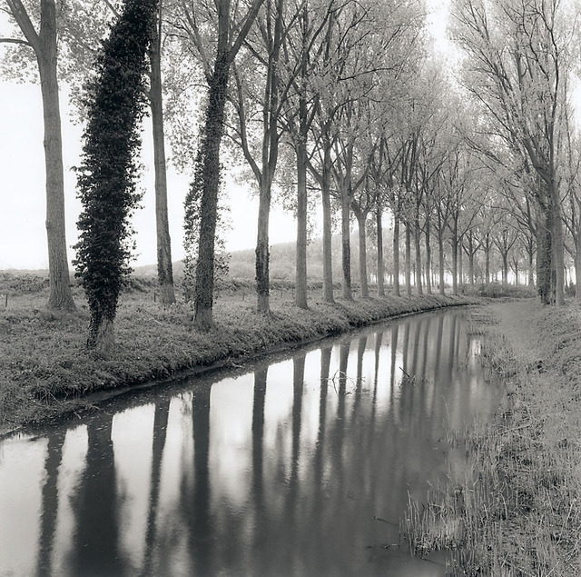 , 'Canal, Damme, Belgium,' 2017, Scott Nichols Gallery