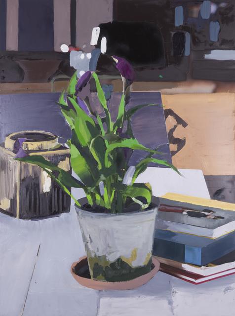 , 'The Exact Distance Between Flower and Bookshelf II,' 2017, Hans Alf Gallery