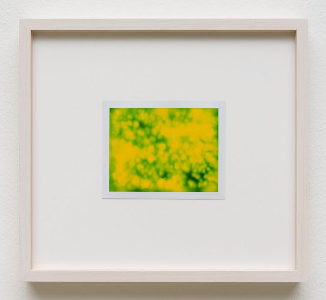 , 'Photuris #7,' 2013, Galerie Crone