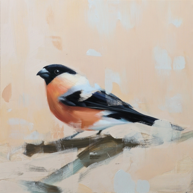 Alpay Efe, 'Studio Note with Bull Finch', 2017, Abend Gallery