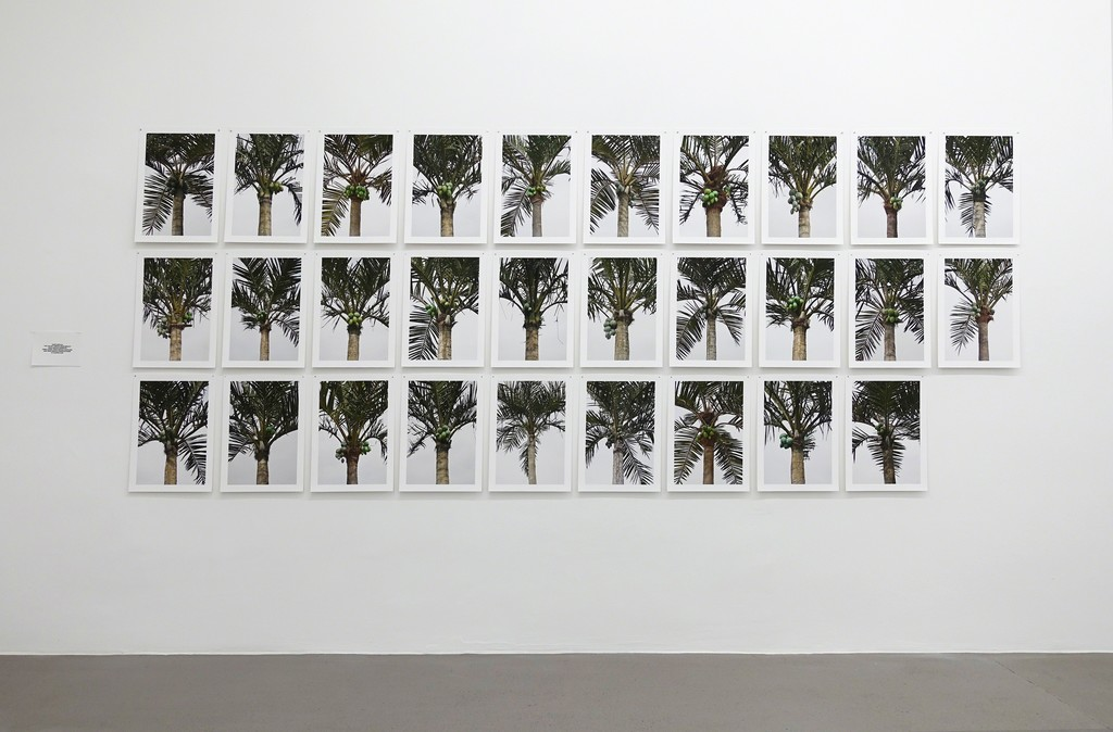 BETALAND Sascha Weidner, 29 Fake Palm Trees, 2014