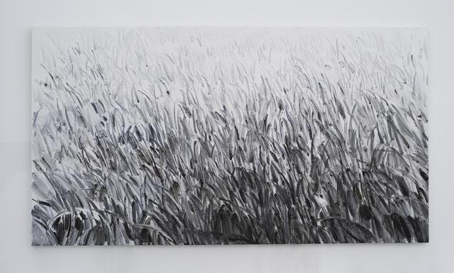 , 'Grass,' 2018, CFHILL