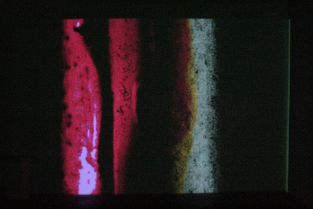 Jennifer West, Flying Through the Air on a Magic Carpet Ride Syrian Rue Film, 2009