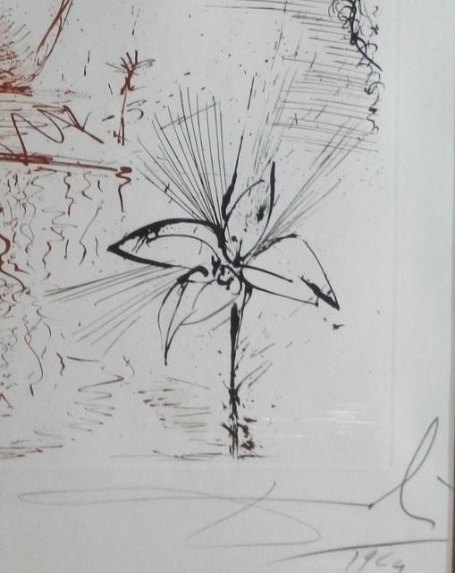 Salvador Dalí, 'The Mythology Narcissus', 1963, Print, Etching, Fine Art Acquisitions Dali