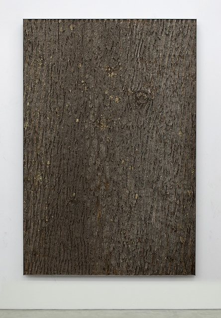 , 'TBT (bark II),' 2015, Moran Bondaroff