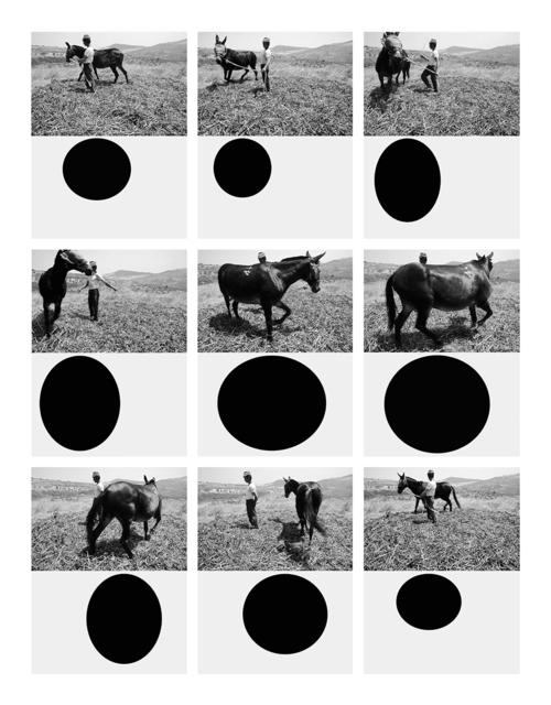 , 'Geometria naturalis, Tricarico 1975 - Bergamo 2011,' 2016, MATÈRIA