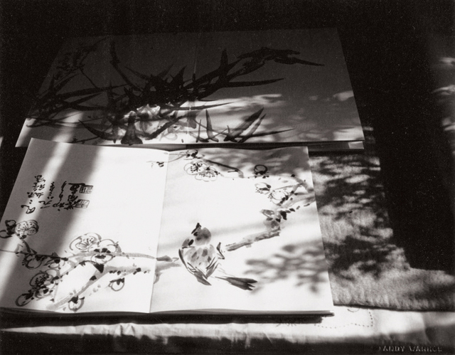 Andy Warhol, 'Seven works: (i) People and Building; (ii) Stone Camel; (iii) Fred Hughes; (iv) Great Wall; (v) Buildings; (vi) Window and Curtain; (vii) Chinese Ink Paintings', 1982, Photography, Seven gelatin silver prints, Phillips
