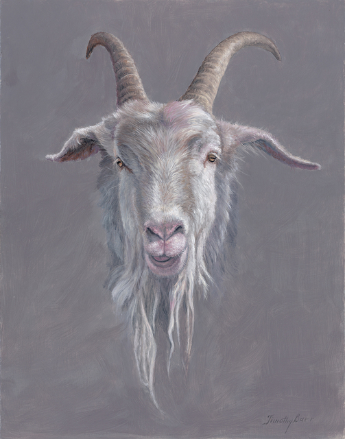 , 'Goat with Dreads,' 2017, Somerville Manning Gallery