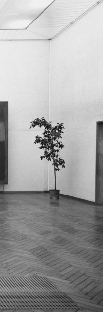 Inge Meijer, 'The Plant Collection IV', 2019, Akinci