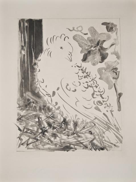 Pablo Picasso, 'Le Pigeon (The Pigeon)', 1936, Les Yeux du Monde Gallery