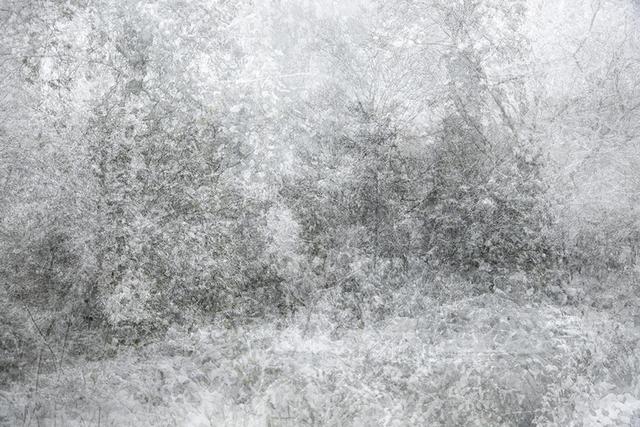 , 'Snow,' 2015, AANDO FINE ART