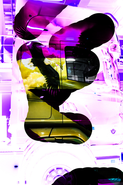 , 'Flash / Ørn,' , CCA Andratx Kunsthalle