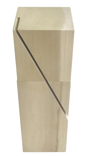 , 'LV0052 – Linear Voids,' , Galeria Karla Osorio