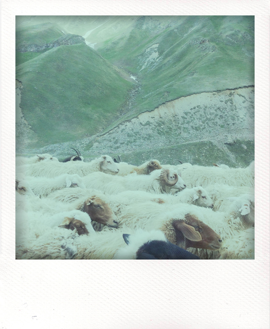 , 'Beyond Socchi,' 2012, °CLAIR Galerie