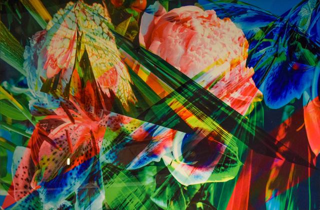 , 'Fairy peony,' 2016, HG Contemporary