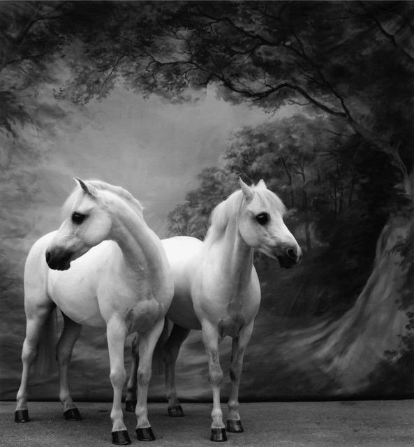 , 'Horse No. 57,' 2000, Cynthia Corbett Gallery