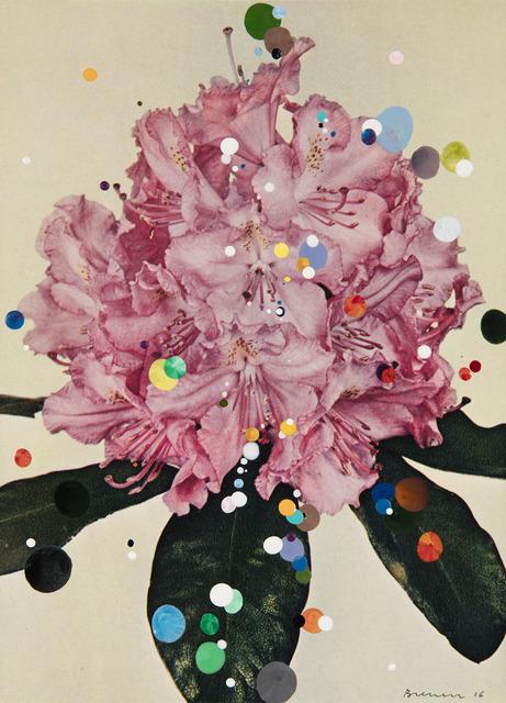 , 'No. 54 #2 Rhododendron Hybrid Marion, serie Bloemen,' 2016, Galeria Leme