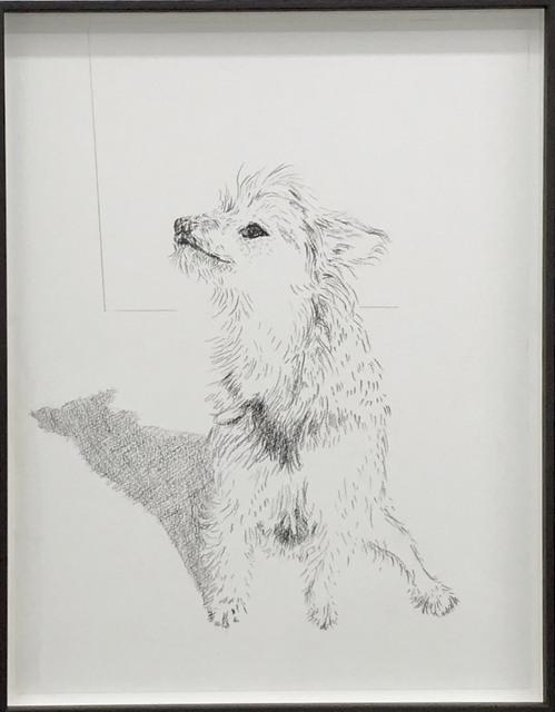 Kao Ya-Ting, 'Pierre', 2018, NUNU FINE ART