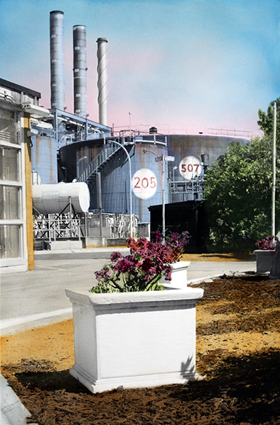, 'The Flowers (Refinery),' 2018, MARS
