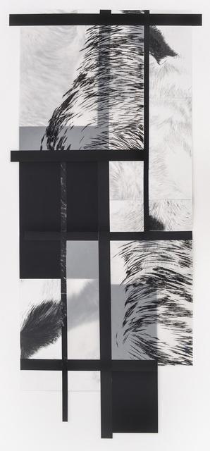 , 'SÉRIE ESTRELA CANINA – ECG-05,' 2016, Dan Galeria