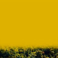 , 'Pantone: Amanecer amarillo - Pantone: yellow dawn ,' 2017, Artflow Galeria