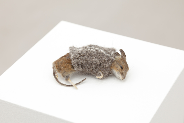 Haruko Maeda, 'Untitled', 2018, Christine König Galerie