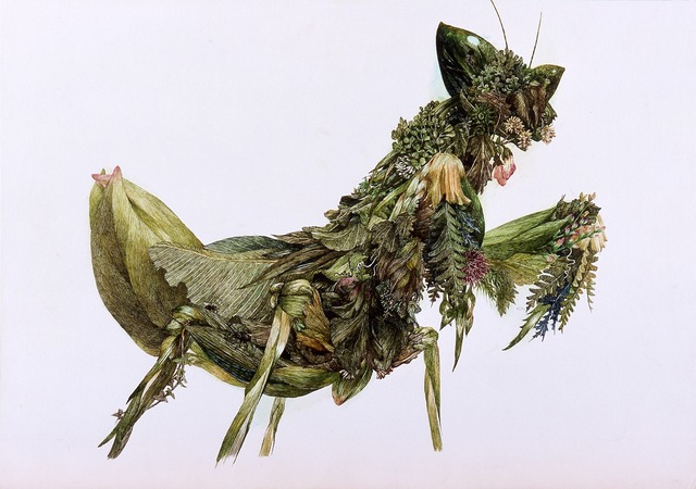 , 'Grass Mantis,' 2004, Japan Society