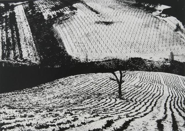 , 'Paesaggio fotomeccanico,' 1965, Photographica FineArt Gallery