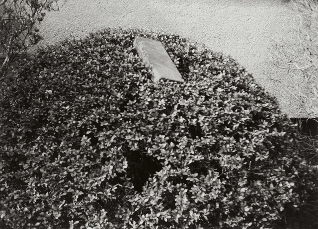 , 'Inactive Environment,' , Tomio Koyama Gallery
