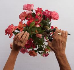 , 'Allontanati da me,' 2011, Lia Rumma