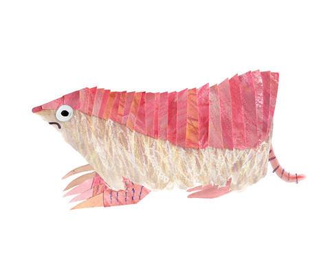 Brendan Wenzel, 'The Pink Fairy Armadillo', ArtStar