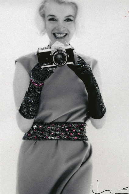 , 'Nikon,' 1962/2013, Anna Laudel