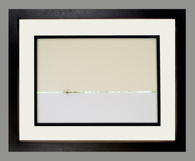 , 'Evidence of Life,' 2014, Fernando Luis Alvarez Gallery
