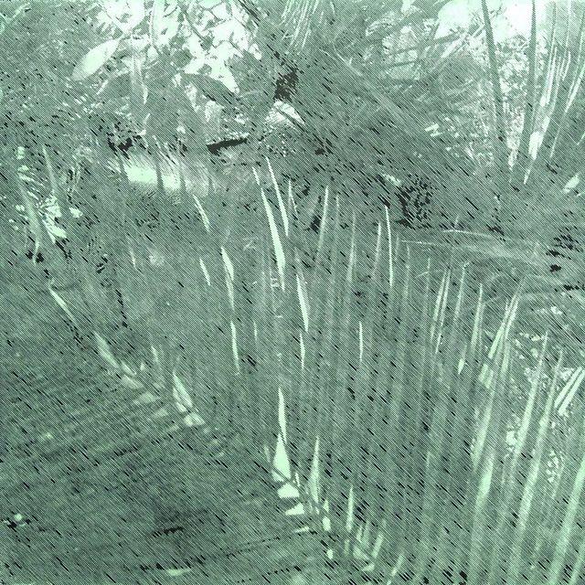 , 'Tristes tropiques #1,' 2015, YUKI-SIS