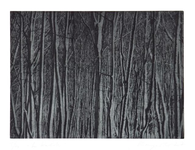 , 'Im Walde,' 2007, Alan Cristea Gallery