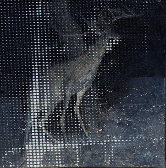 , 'ANMLA Flashlight,' 2018, Luisa Catucci Gallery