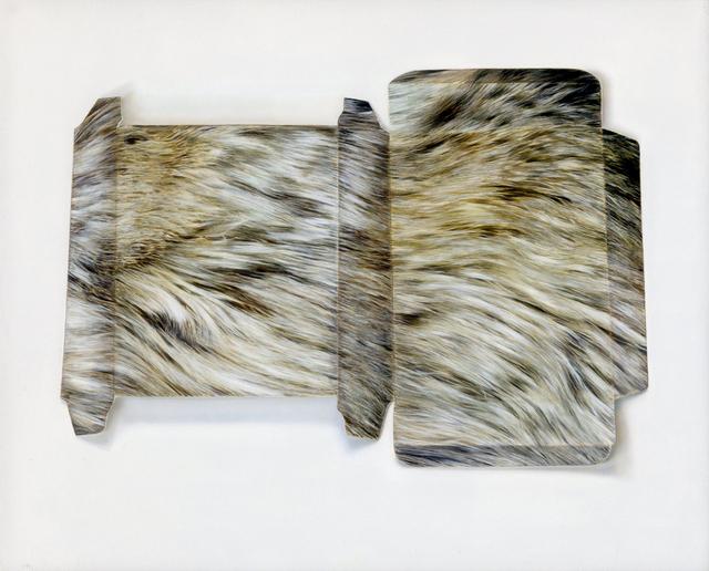 , 'Fur-effect Box,' 2016, Purdy Hicks Gallery
