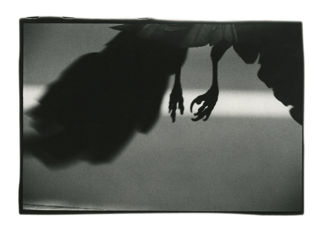 , 'Koen-dori, Shibuya,' 1982, Michael Hoppen Gallery