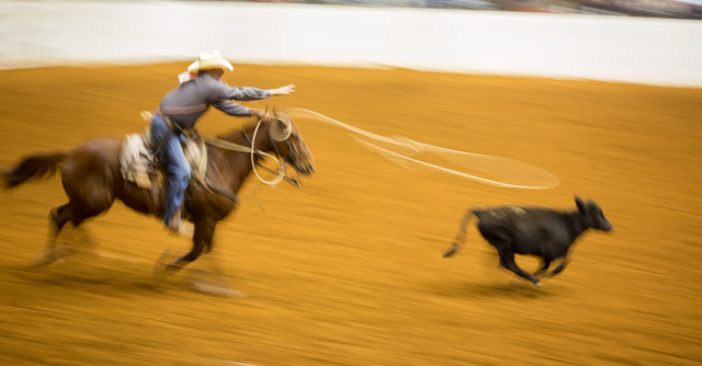 Rima Canaan Lee, 'Roping', 2014, Photography, Archival pigment print, Talley Dunn Gallery