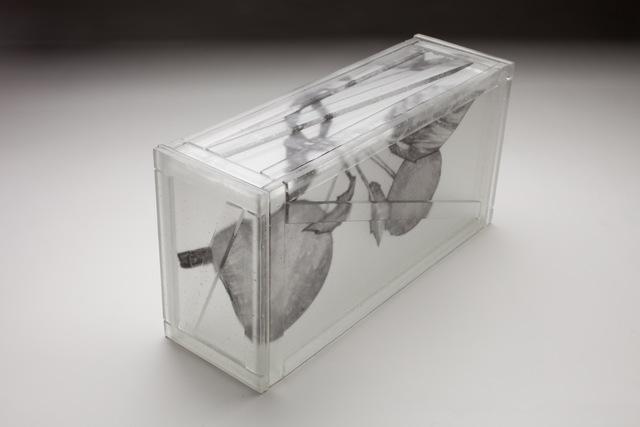 Jeremy Lepisto, 'Fruit to Bear', 2010, Duane Reed Gallery