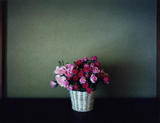 , 'Plastic Flowers,' 2011, Galerie f5,6