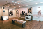 Guadalupe Laiz Gallery Space
