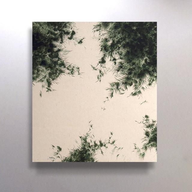 , 'Breathing 10,' 2012, Sarah Hong Gallery