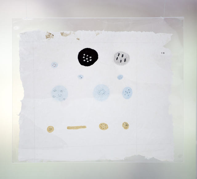 , 'Komi thë nathe pë ukushi, pareto, moka, yoyo (numerosos huevos de zancudo, jején, rana moka y sapo),' 2015, ABRA