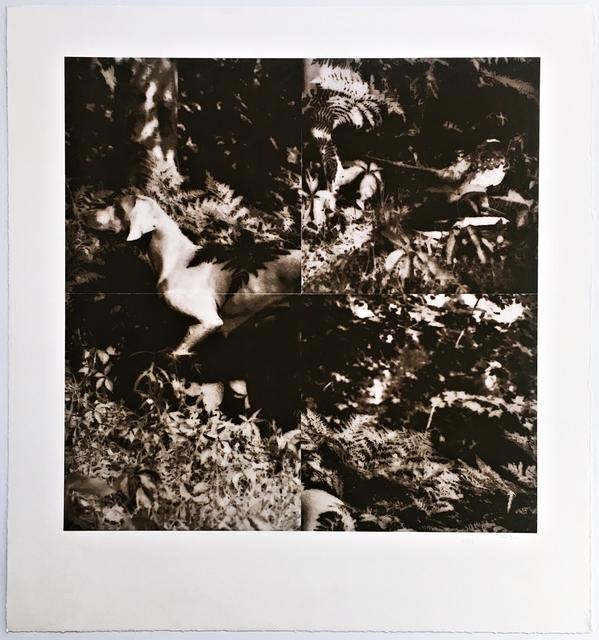 , 'Bird Dog Suite (One Plate),' 1990, Alpha 137 Gallery