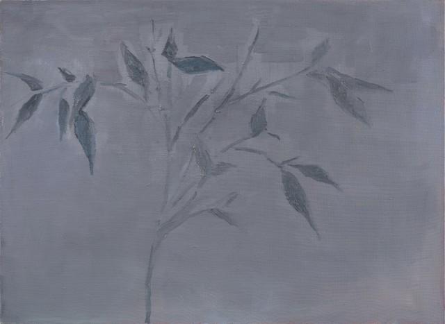 , 'Bamboo,' 2016, Aye Gallery