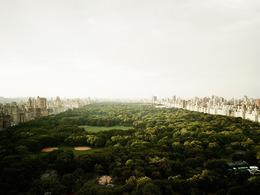 Josef Hoflehner, 'Central Park, New York', 2011, Jackson Fine Art