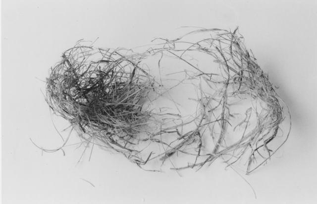 , 'The End (Nest Two),' 1999, John Davis Gallery